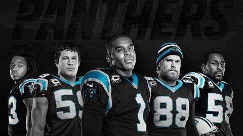 Carolina Panthers ticket renewal brochure